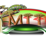 Madagascar Film and Journalism Permits Services – Filming Permits and TV/Movie Production Personnel for Madagascar